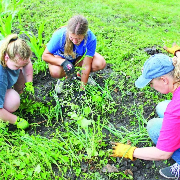 Hands For Christ volunteers weed a garden during the Hands For Christ event Saturday, July 10.